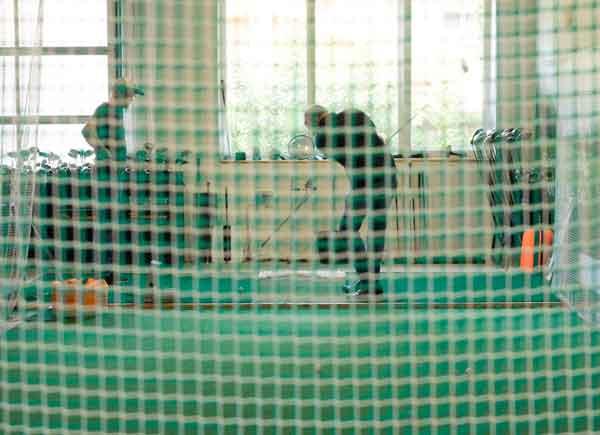 Golfschwung - Indoorhalle